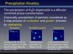 precipitation kinetics