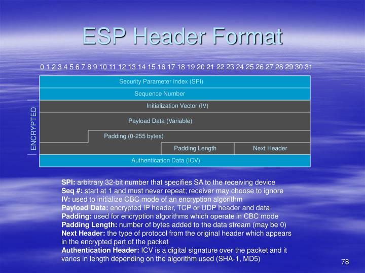 ESP Header Format