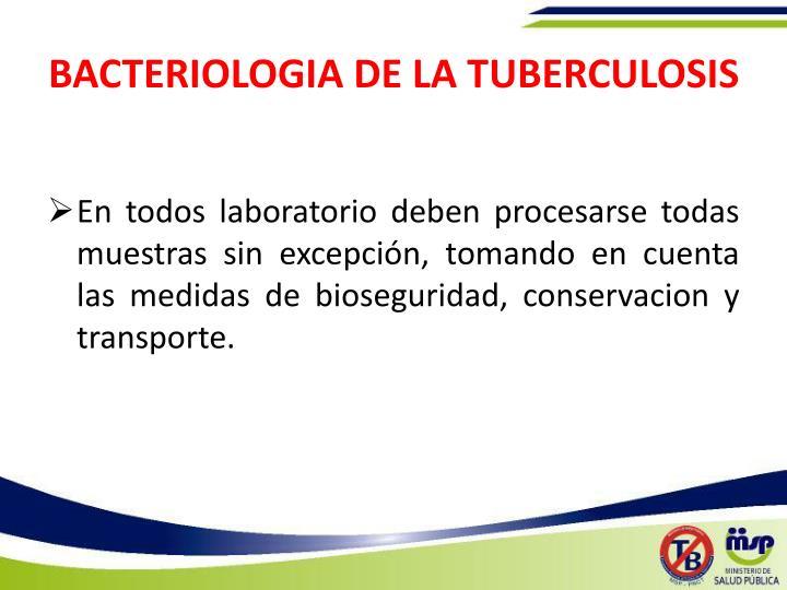 BACTERIOLOGIA DE LA TUBERCULOSIS