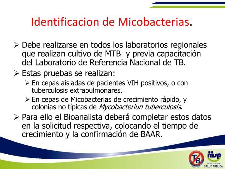Identificacion de Micobacterias