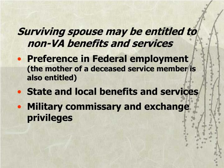 Surviving spouse may be entitled to non-VA benefits and services