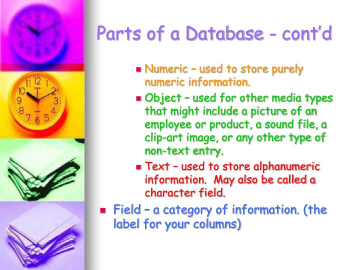 Parts of a Database - cont'd
