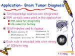 application brain tumor diagnosis