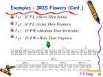 examples iris flowers cont