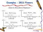 examples iris flowers2