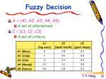 fuzzy decision