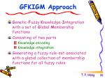 gfkigm approach