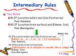 intermediary rules