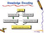 knowledge encoding