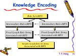 knowledge encoding1