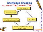 knowledge encoding2
