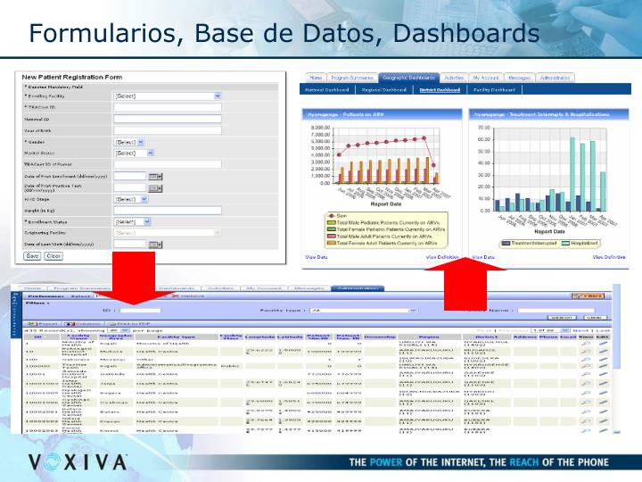 Formularios, Base de Datos, Dashboards