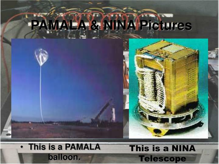 Pamala nina pictures