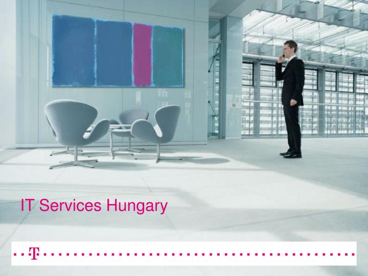 It services hungary