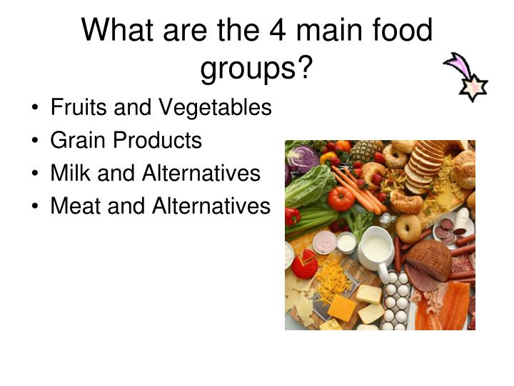 What are the 4 main food groups