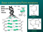 base substitutions point mutations