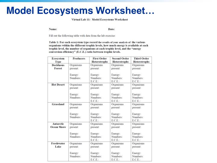 Quiz   Worksheet   Succession in Freshwater and Terrestrial as well Free Worksheets Liry   Download and Print Worksheets   Free on moreover 28  Collection of Secondary Succession Clipart   High quality  free also 3rd grade science activity worksheets PDF additionally impact on ecosystems review  article    Khan Academy furthermore New AQA  Lesson 3  How does change effect an ecosystem  by Emsie125 likewise Potion   munity   Ecosystem Worksheet   Life Science in addition Ecosystem Concept Map Graphic Organizer for 6th   9th Grade   Lesson additionally How Ecosystems Change   Ecological Succession   MarshScience7 together with New AQA  Lesson 3  How does change effect an ecosystem  by Emsie125 as well  together with Ecosystem Worksheet Answers Worksheets for all   Download and Share further 5th Grade Ch  6 Lesson 1 How do Ecosystems Change together with PPT   Virtual Lab   Modeling Ecosystems PowerPoint Presentation   ID further Chapter 26 Ecosystems  Section 1  How Ecosystems Change moreover Chapter 5 Section 3 Fill in  the Blank Notes How Ecosystems Change. on how ecosystems change worksheet answers