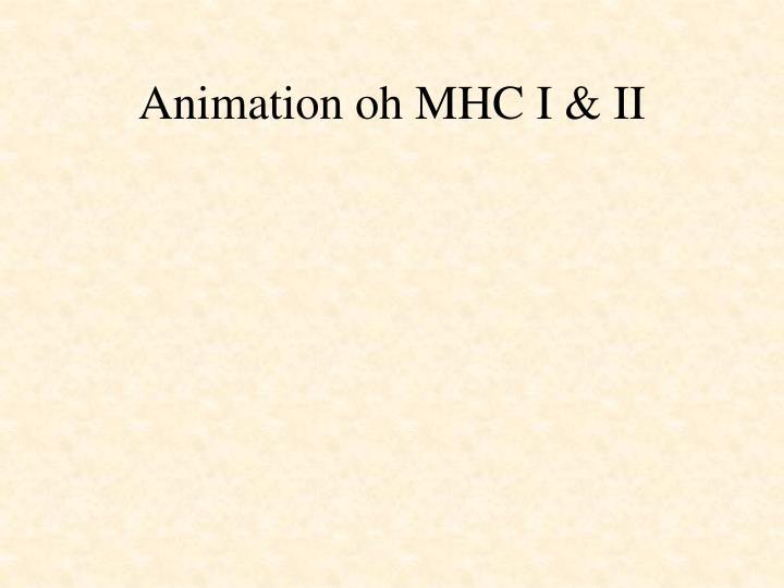 Animation oh MHC I & II