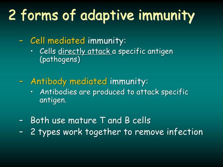 2 forms of adaptive immunity