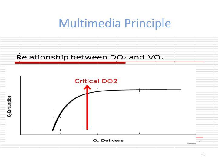 Multimedia Principle