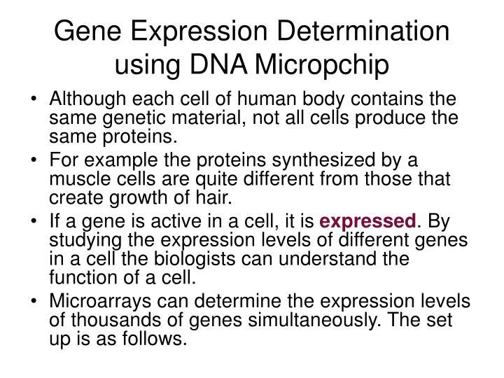 Gene Expression Determination using DNA Micropchip