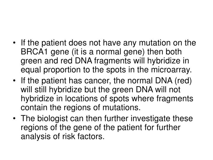 If the patient does not have any mutation on the BRCA1 gene (it is a normal gene) then both green and red DNA fragments will hybridize in equal proportion to the spots in the microarray.