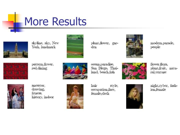 More Results