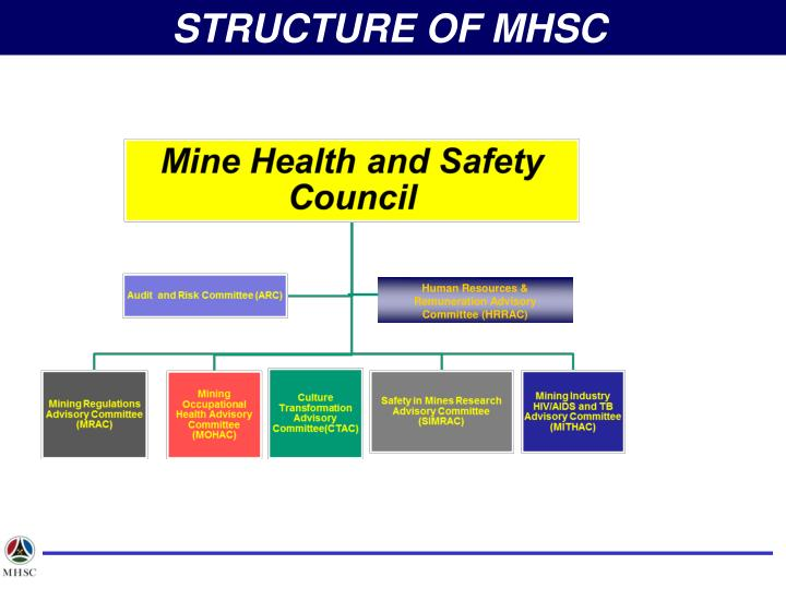 STRUCTURE OF MHSC