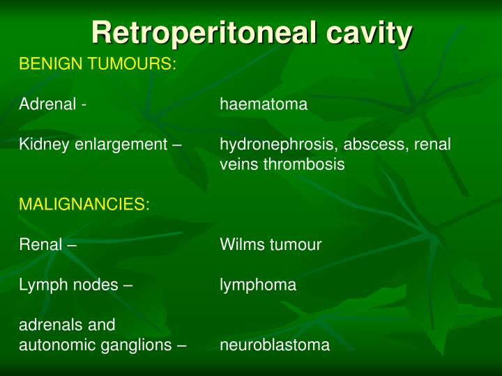Retroperitoneal cavity