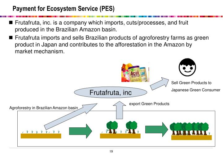Payment for Ecosystem Service (PES)
