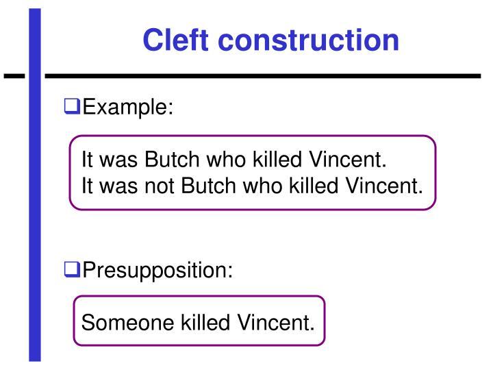 Cleft construction