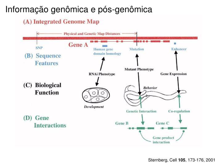 Informação genômica e pós-genômica