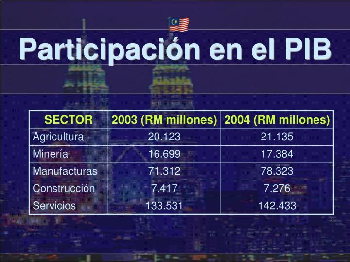 Participación en el PIB