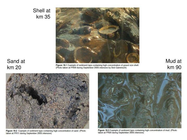 Shell at