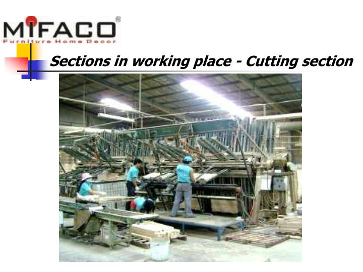 Sections in working place - Cutting section