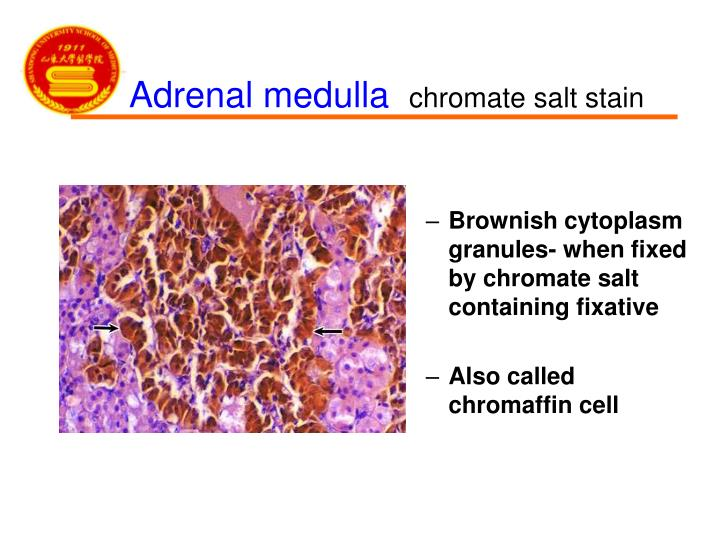 Brownish cytoplasm granules- when fixed by chromate salt containing fixative