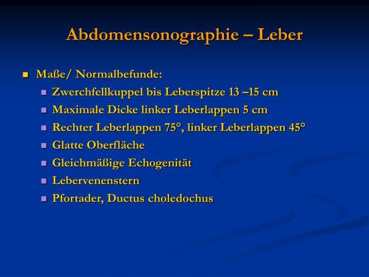 Abdomensonographie – Leber