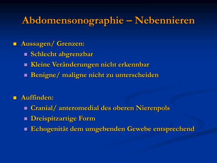 Abdomensonographie – Nebennieren