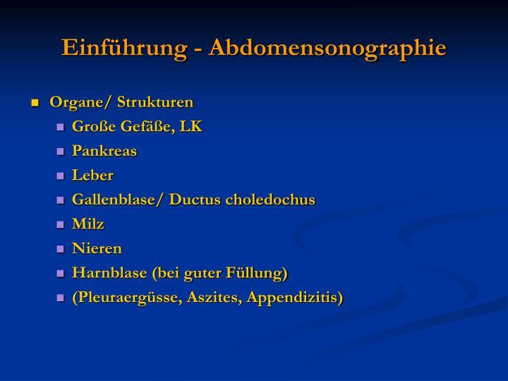 Einf hrung abdomensonographie1
