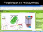 visual report on photosynthesis