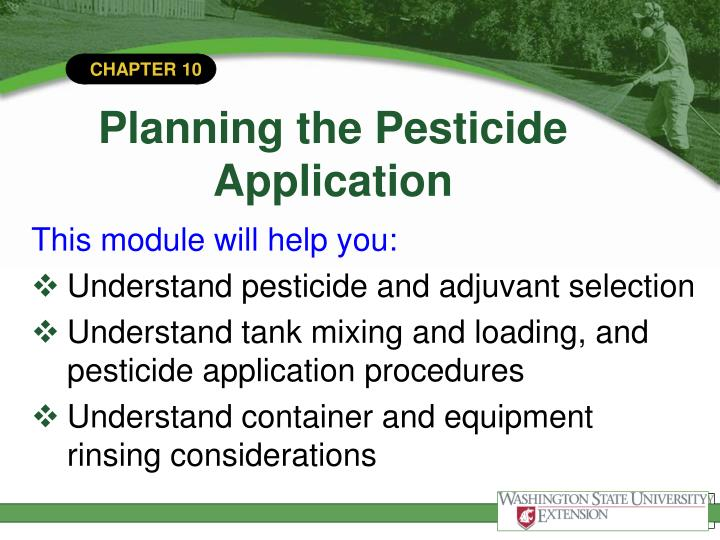 Planning the pesticide application1