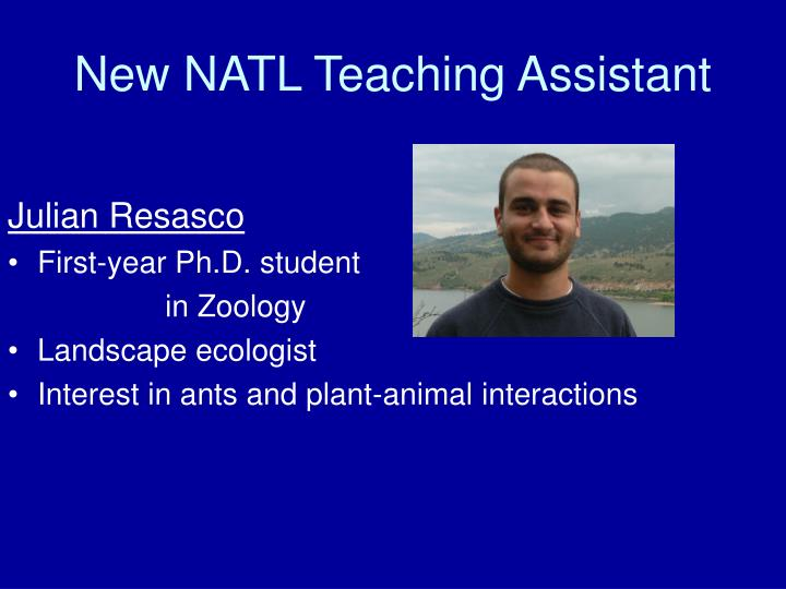 New natl teaching assistant