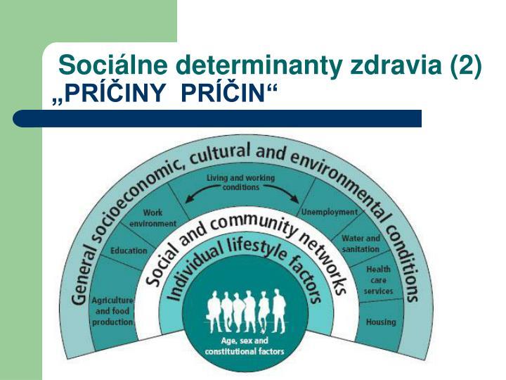 Sociálne determinanty zdravia (2)