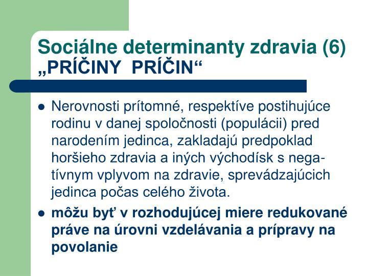 Sociálne determinanty zdravia (6)