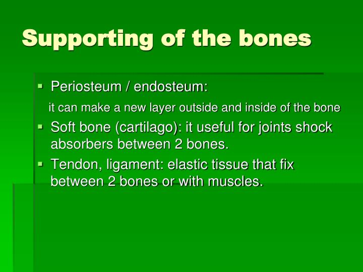 Supporting of the bones