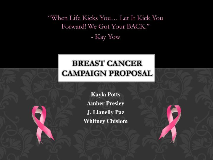 Breast cancer campaign proposal