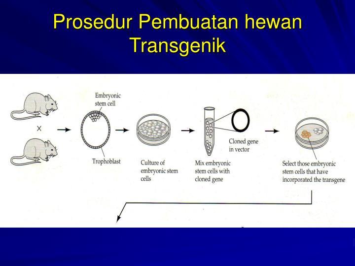 hewan transgenik Makanan transgenik di indonesia sebagai contoh, tomat yang awalnya tidak bisa ditanam di daerah bersuhu rendah, setelah direkayasa menjelma menjadi tanaman tahan beku dan memiliki musim.