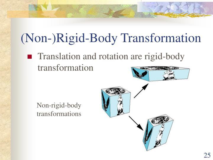 (Non-)Rigid-Body Transformation