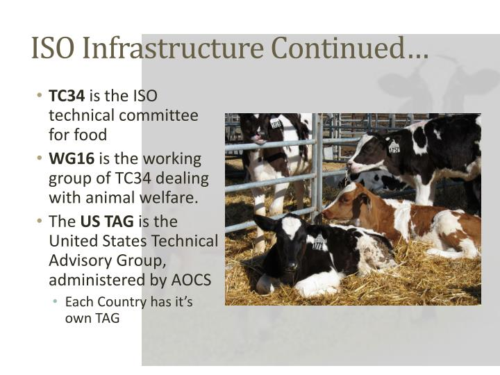ISO Infrastructure Continued…