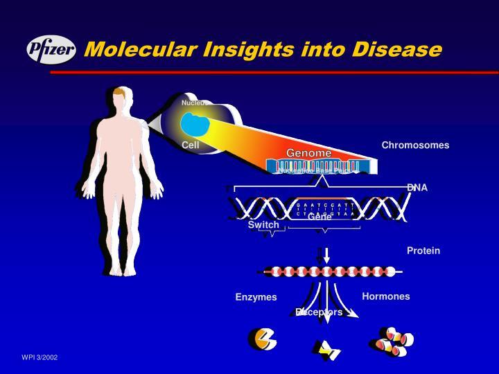 Molecular Insights into Disease